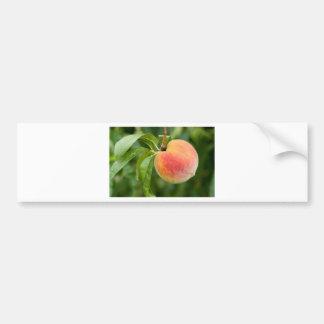 peach on a tree bumper sticker