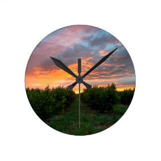 Peach Orchard Sunset Wall Clock