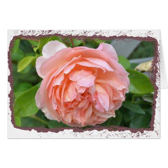 Peach Peony Card