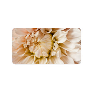 Peach, Pink, White, & Cream Dahlia Background Address Label