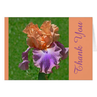 PEACH & PURPLE IRIS / THANK YOU/ IT WAS SO THOUGHT NOTE CARD