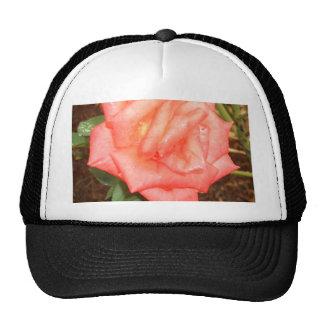 Peach Rose in the Rain CricketDiane Florals Cap