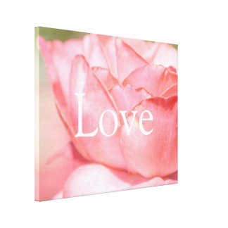 Peach Rose Love Canvas Print