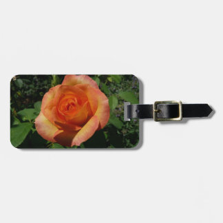 Peach Rose Orange Floral Luggage Tag