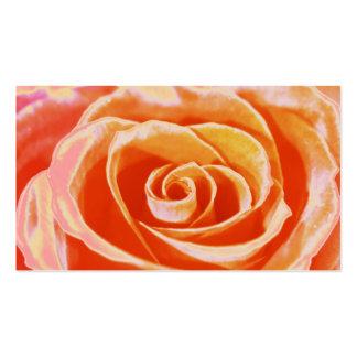 Peach rose wedding coordinator business cards
