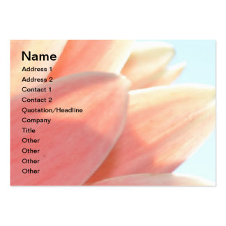 Peaches and Cream Chubby Card Pack Of Chubby Business Cards
