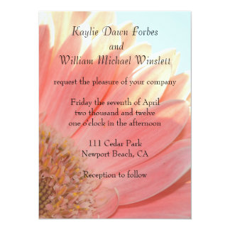 Peaches and Cream Gerbera Flower 14 Cm X 19 Cm Invitation Card