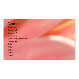 Peaches and Cream- Peachy Pack Of Standard Business Cards