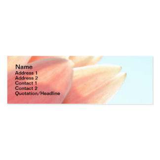 Peaches and Cream- Skinny Cards Pack Of Skinny Business Cards