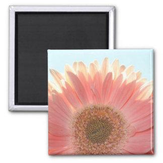 Peaches and Cream Square Magnet