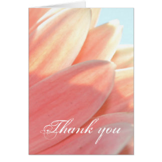 Peaches and Cream- Thank you Greeting Cards
