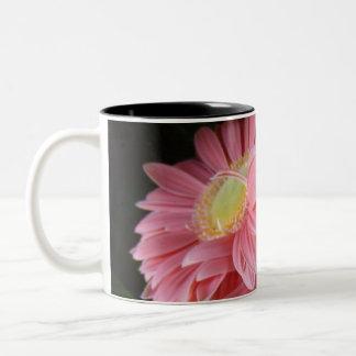 Peachy Pink Daisies Mug