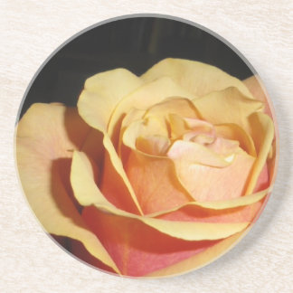 Peachy Red Rose Drink Coaster