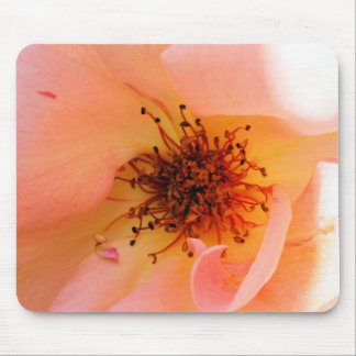 Peachy Rose Mouse Pad