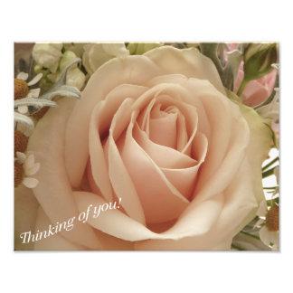 Peachy rose photo art