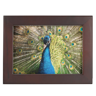 Peacock Affirmation Keepsake Box