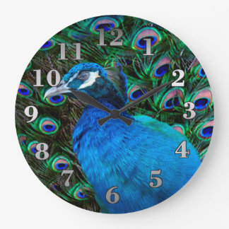 Peacock and Feather Clock