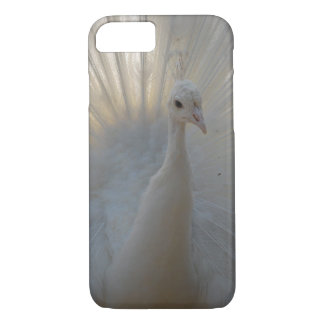 Peacock Apple iPhone 8/7, Barely There Phone Case