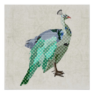 Peacock  Art Canvas Poster