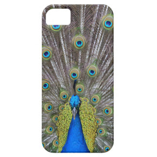 Peacock Barely There iPhone 5 Case
