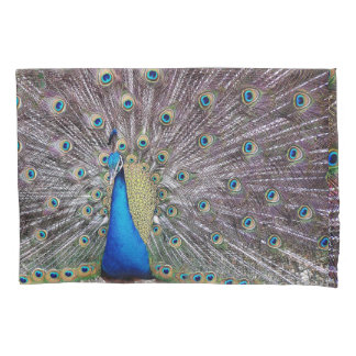 Peacock Bird Animal Feathers Peafowl Pillowcase