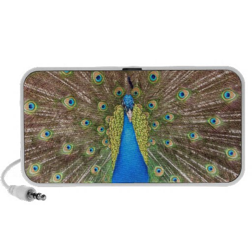 Peacock bird feathers photo doodle speakers