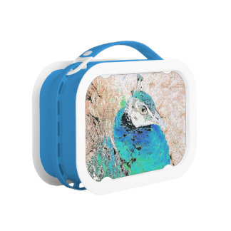 Peacock Bird Wildlife Animals Feathers Lunchboxes