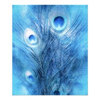 Peacock Blue Photo Print