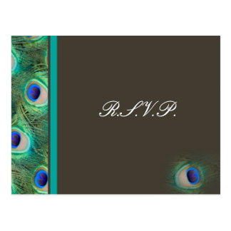 peacock blue  Wedding rsvp card Postcard