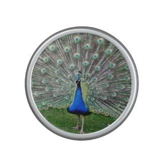 Peacock Bluetooth Speaker