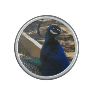Peacock Bumpster Speaker