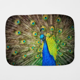 Peacock Burp Cloth