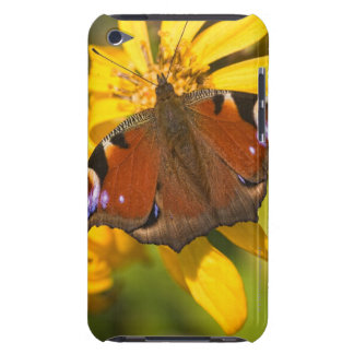 Peacock butterfly barely there iPod covers