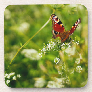Peacock Butterfly In Green Summer Meadow Coasters