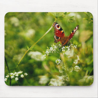 Peacock Butterfly In Green Summer Meadow Mouse Pad