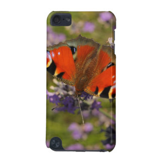 peacock butterfly iPod touch 5G covers