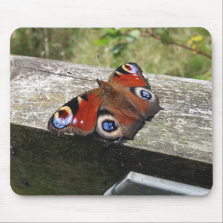 Peacock Butterfly Mousemat