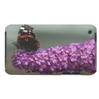 Peacock butterfly on flower iPod touch Case-Mate case
