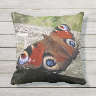 Peacock Butterfly Outdoor Cushion