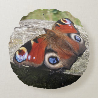 Peacock Butterfly Round Cushion