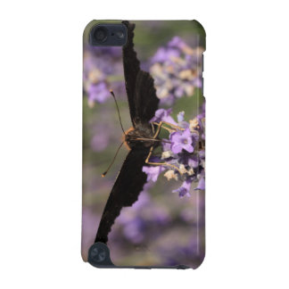 peacock butterfly sucking lavender nectar iPod touch (5th generation) cover