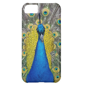Peacock Cover For iPhone 5C