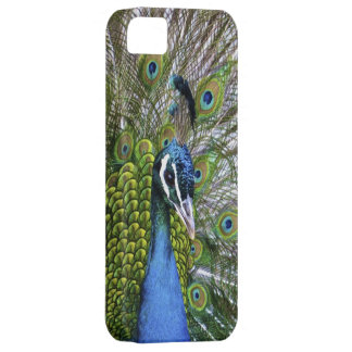 Peacock Case Case For The iPhone 5
