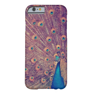 Peacock Case Barely There iPhone 6 Case