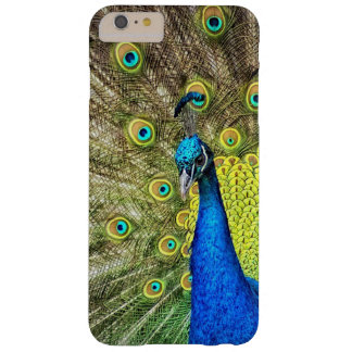 Peacock Cell Phone Case