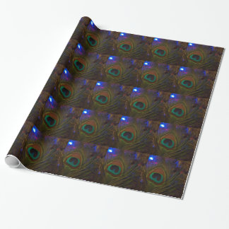 Peacock Christmas Feather Wrapping Paper