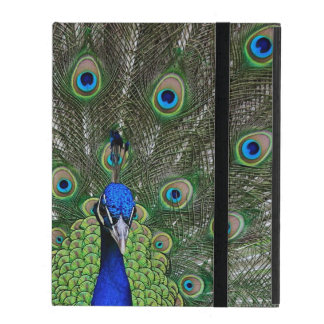 Peacock Cover For iPad