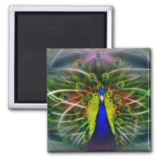 Peacock Dreamcatcher Fridge Magnet