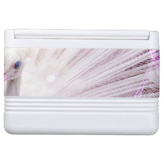 Peacock Fantasy in Pink Cooler