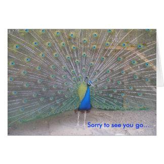 Peacock - Farewell Greeting Card